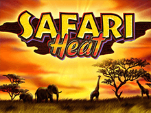 Safari Heat в казино Вулкан Делюкс